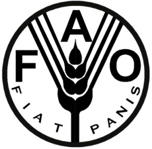 fao logo Food and Agriculture Organization of the United Nations