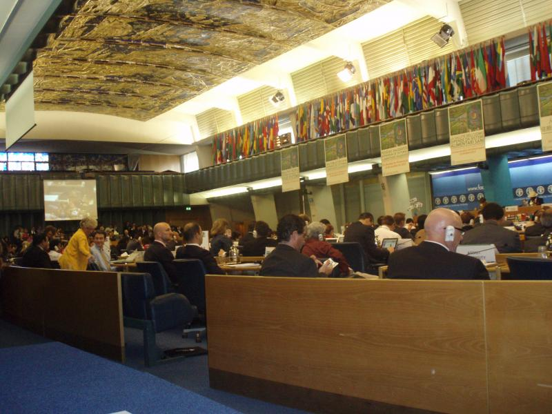 CFS week in Rome – 40 session