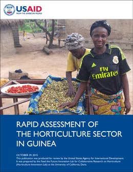 Rapid Assessment Horticulture Sector Guinea
