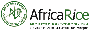 AfricaRica - Innovation platforms in rice value chains agrinatura
