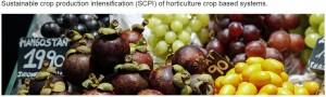 fao-horticulture