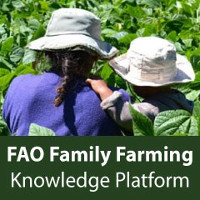 FAO Family Farming