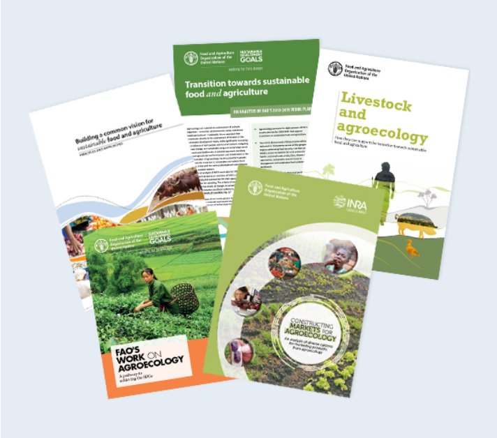 Agroecology and Livestock