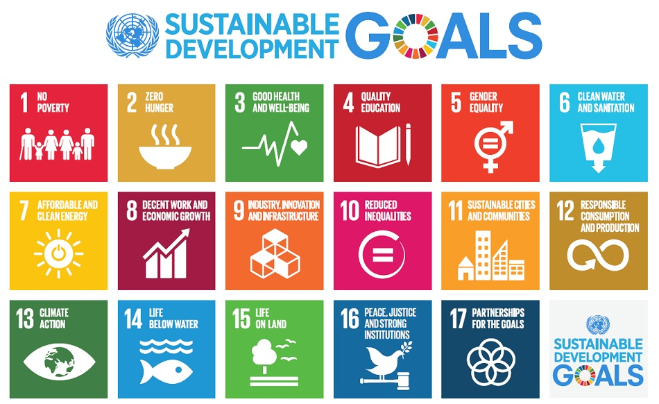 Call for Success Stories in SDG Implementation