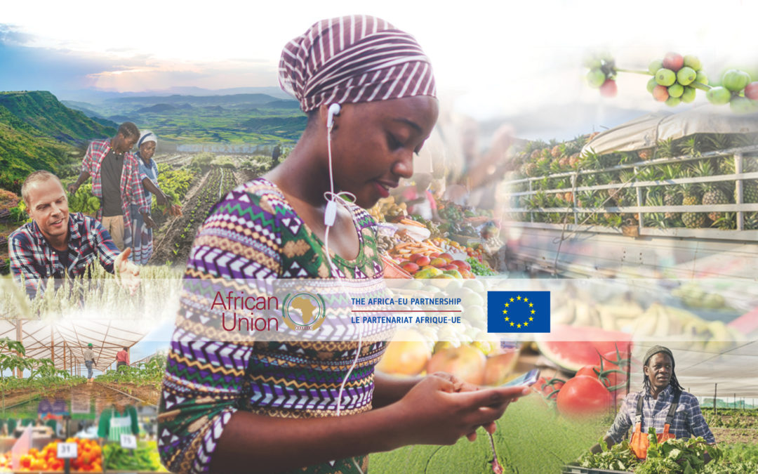 Agrinatura at African Union – European Union agriculture ministerial conference !