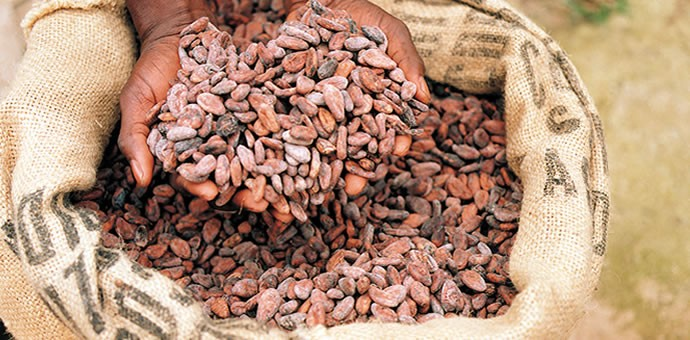 New Value Chain Analysis in Ecuador on Cacao! Call for Experts ! Apply now!