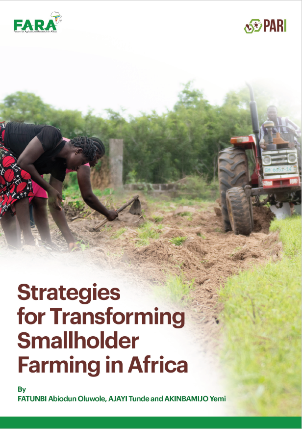Strategies-for-Transforming-Smallholder-Farming-in-Africa-OFatunbi-FARA-Final-16122020 obr.pdf