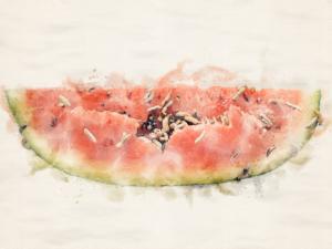 DSC06520_watermelon_small